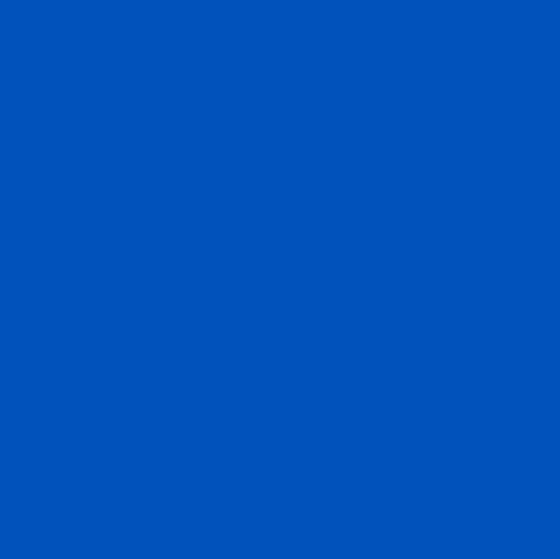 134 Lagoon Turquoise Hibiscus Lagoon