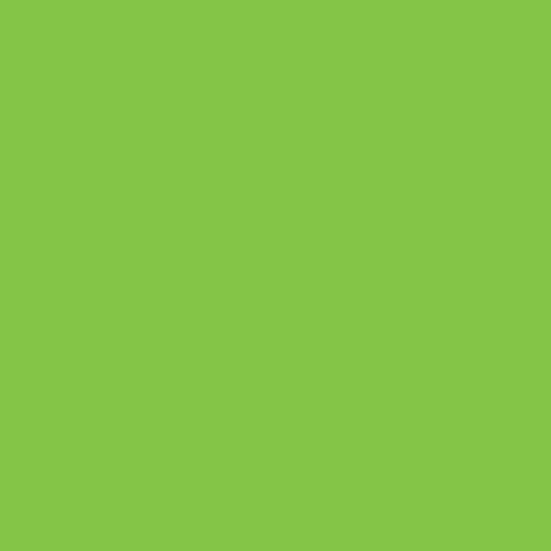 151 Turquoise Sunflower Lagoon