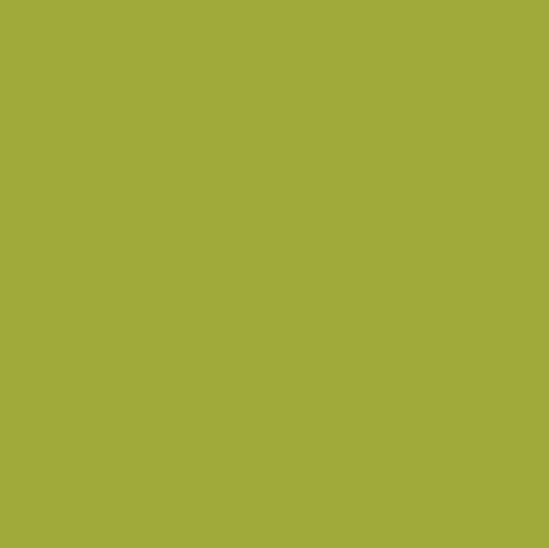 158 Turquoise Sunflower Sand