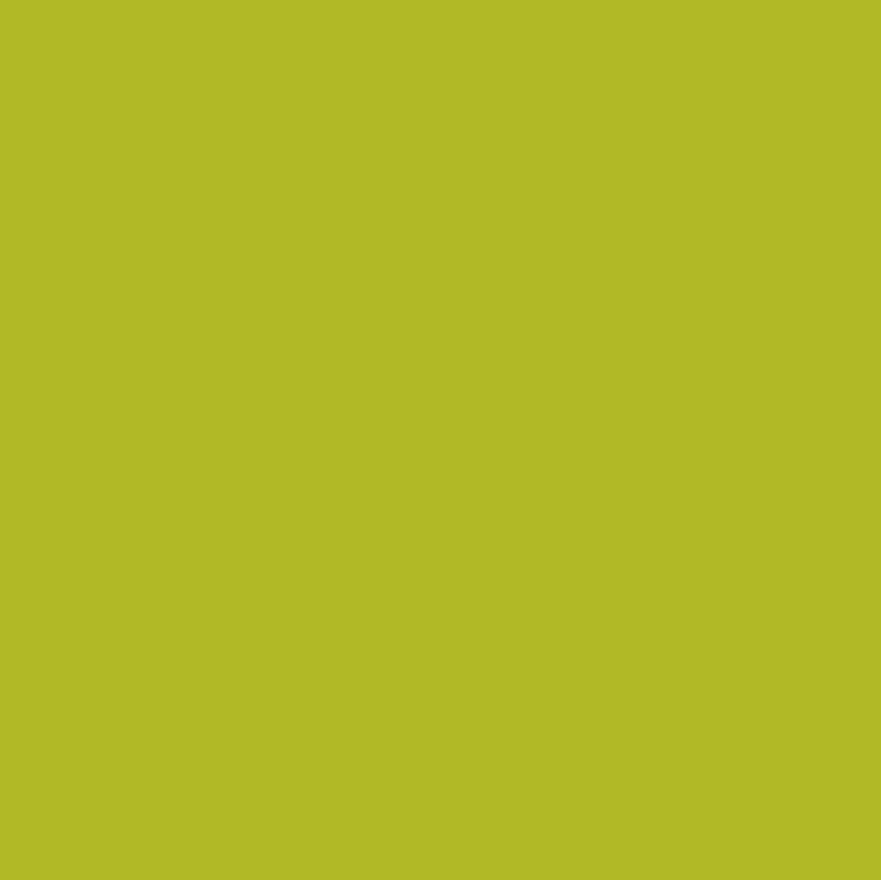171 Turquoise Blush Sunflower Turquoise