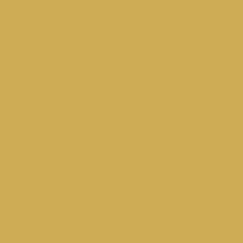 248 Sunflower Sand
