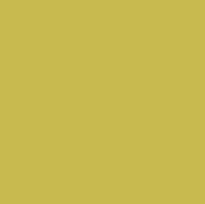 249 Mist Turquoise Sunflower Mist
