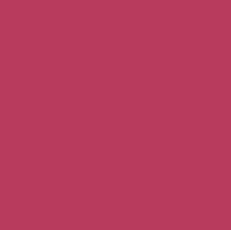 37 Hibiscus Hibiscus Sand Hibiscus