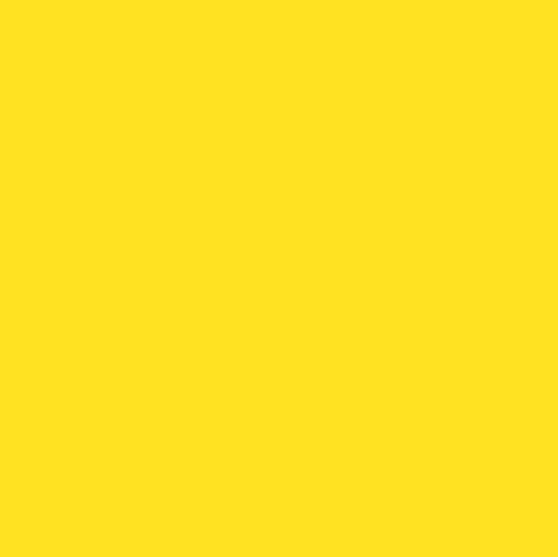 73 Sunflower Sunflower