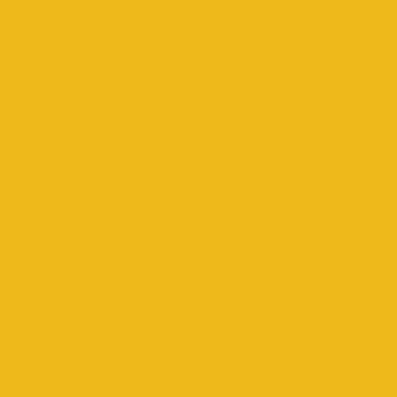 81 Mist Mist Sunflower Mist