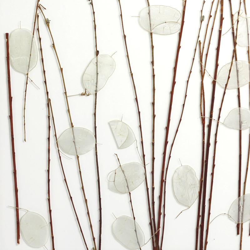 ati laminates naturals in glass surface products luna stalk