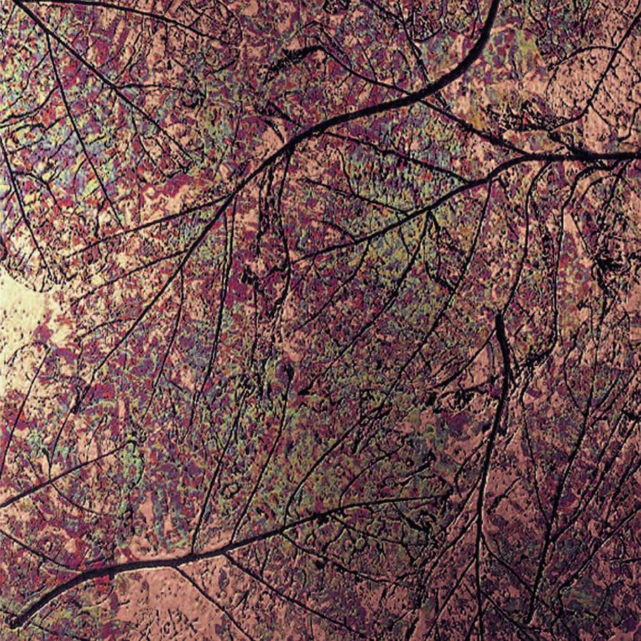 NuMetal Patina Autumn Leaves C421
