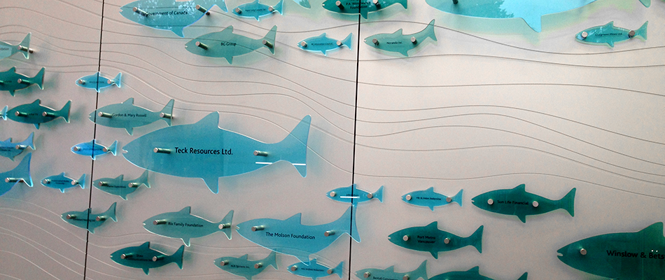 surface products colored laminated glass vancouver aquarium 2