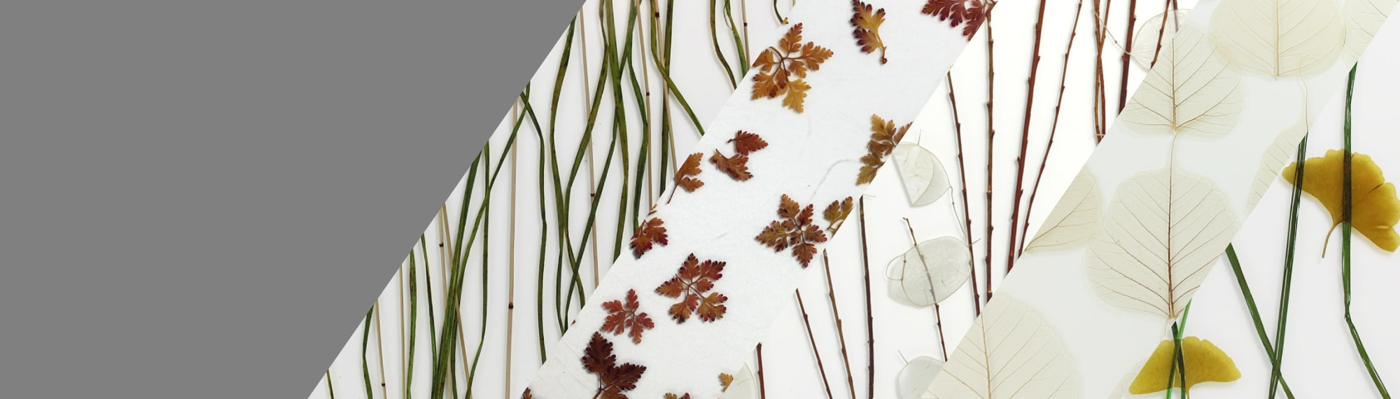 grass in glass surface products leaves in glass homepage slider organics min